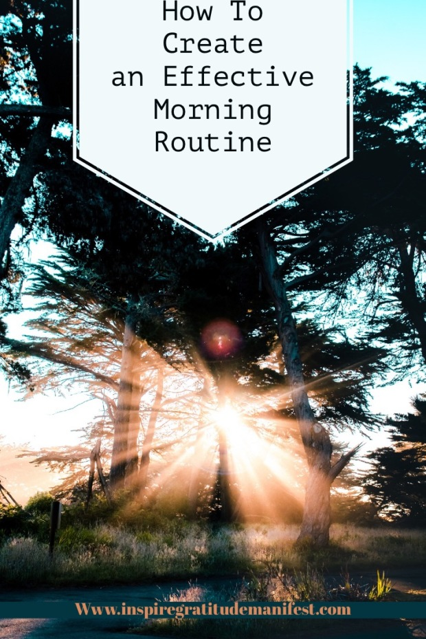 Sunshine through the trees, how to create an effective morning routine